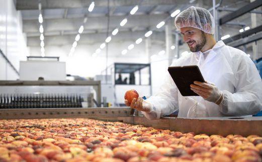 Entreprises agroalimentaires : quels enjeux de planification et de prévision ?